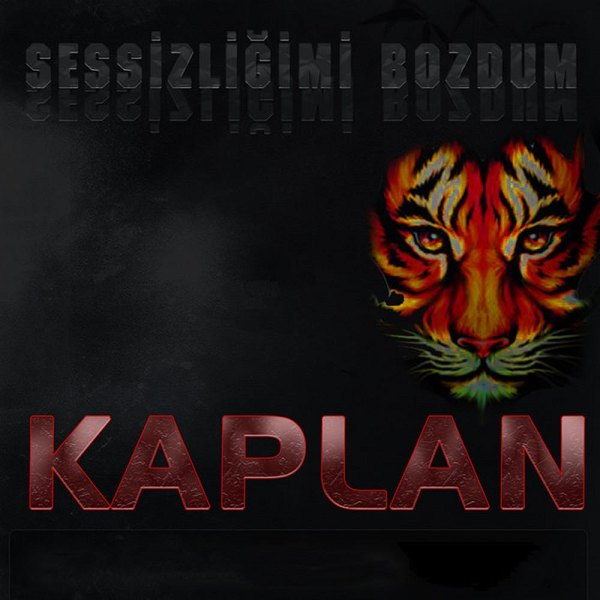 KAPLAN - 2009