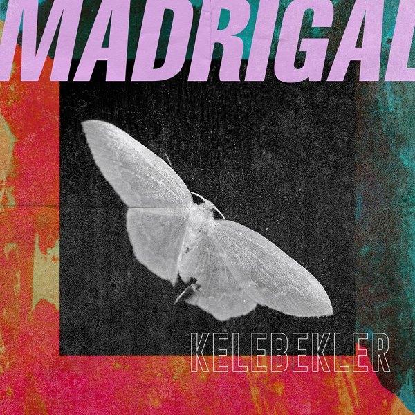 Madrigal 2019